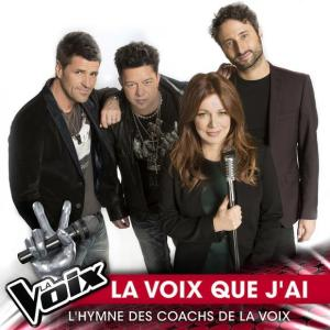 Various Artists - La voix que j'ai