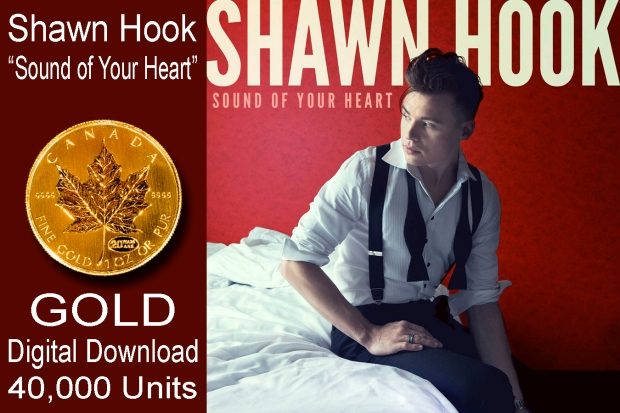 shawn hook - sound of your heart gold copy